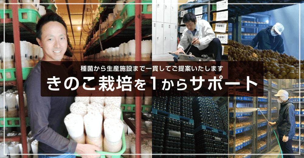 種菌から生産施設まで一貫してご提案いたします きのこ栽培を1からサポート