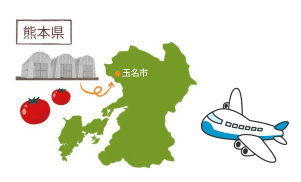 開発のきっかけは「熊本県で環境制御が始まる!」との情報